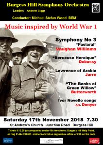 BHSO poster November 2018